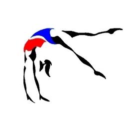 GAF - Point compétitions départementales 2016-2017