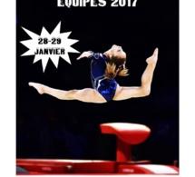 GAF - Organigramme DEFINITIF Dep équipes 28/29 janvier 2017