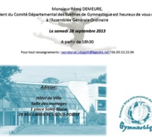 Le Congrès du CDY est prévu samedi 28 septembre 2013 à 18h30 à Carrières sous Poissy