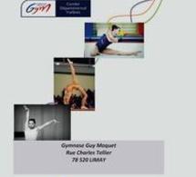 Championnat des Yvelines GAF Individuel 13 et 14 Décembre 2014