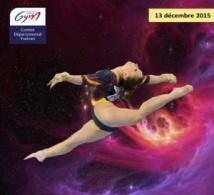 GAF - Organigramme Champ. Départemental - 13/12/2015