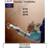 GAF - Organigramme DEFINITIF Départemental 9-10 avril 2016
