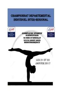 GAF - Résultats Départemental indiv IRB-C janvier 2017