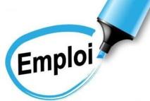 Offre d'emploi / Groupement des Employeurs FFGYM