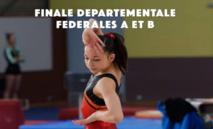 Organigramme GAF Dep équipes FED A - FED B - Poussines à Vélizy