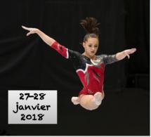 GAF - Organigramme DEFINITIF Equipes Perf et Equipes Fed A - Jan 2018