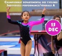 GAF: Organigramme DEFINITIF de la Compétition Départemental Individuelles Performance et Fédéral A à Sartrouville