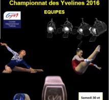 GAF: Organigramme Départemental Equipes jan 2016 VDEF