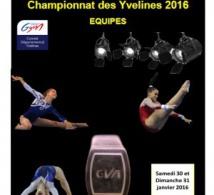 GAF: Palmarès Départemental équipes - 30/31 janvier 2016